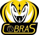 Cobra Logo (2)